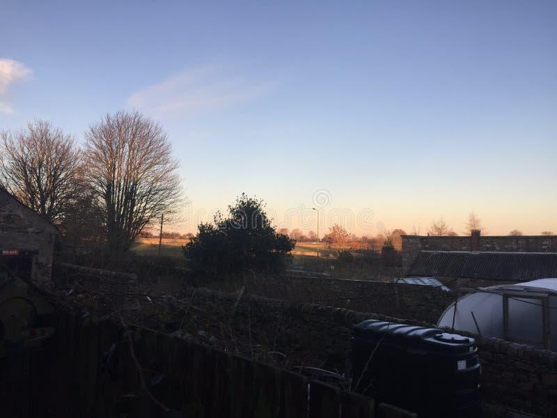 Vista del giardino nell'inverno immagini stock libere da diritti