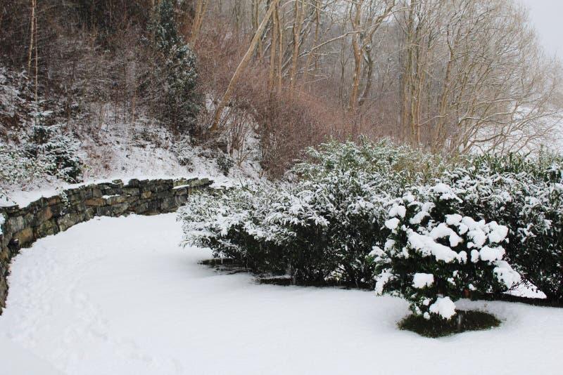 Vista del giardino sull'inverno immagine stock