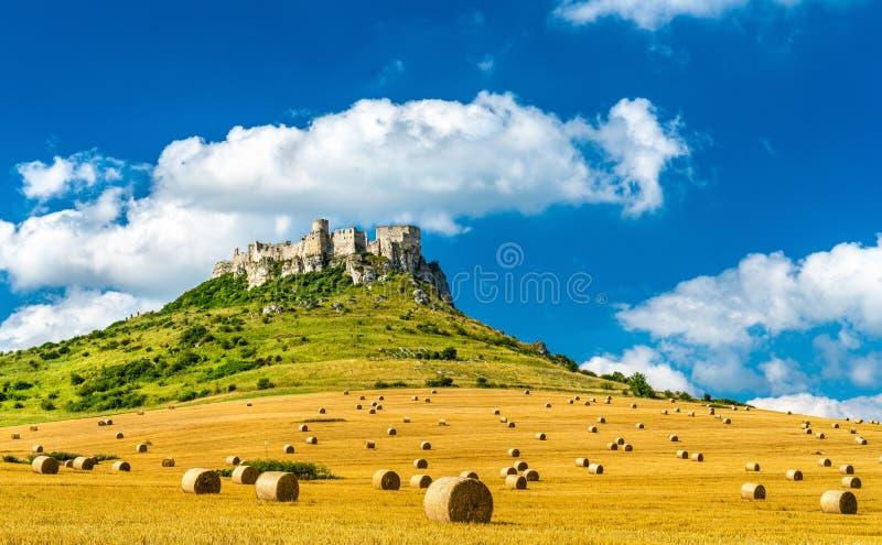 Vista del hrad de Spissky y un campo con las balas redondas en Eslovaquia, Europa Central imágenes de archivo libres de regalías