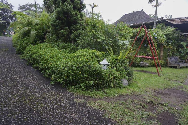 Vista del jardín verde en Bali imagenes de archivo