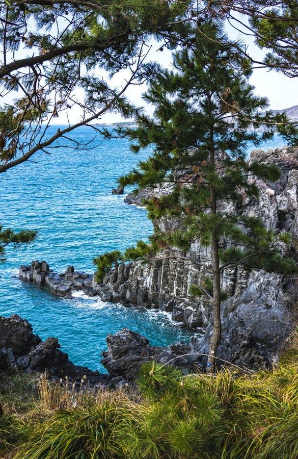 Vista del Jusangjeollidae Jusangjeolli è colonne di pietra accatastate su lungo la costa ed è un monumento culturale designato di fotografia stock libera da diritti