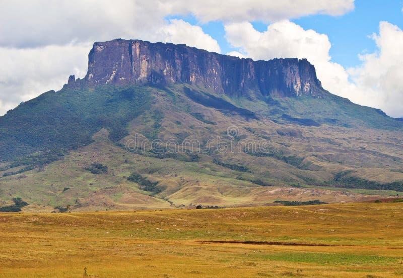 Vista del Kukenan tepuy fotos de archivo libres de regalías