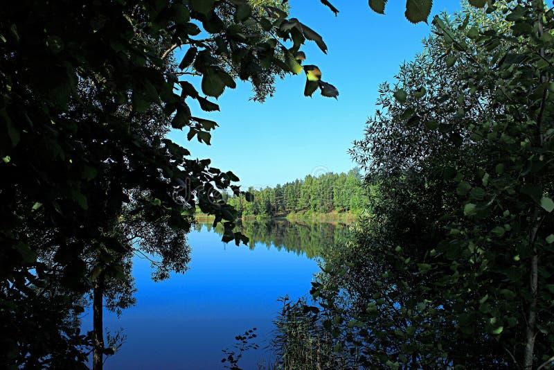 Vista del lago attraverso gli alberi immagini stock