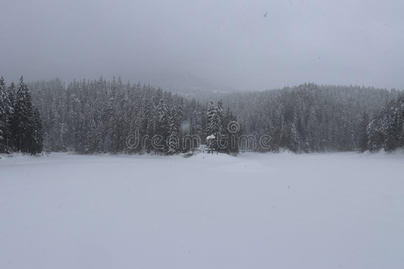 Vista del lago congelado Synevyr imagen de archivo libre de regalías