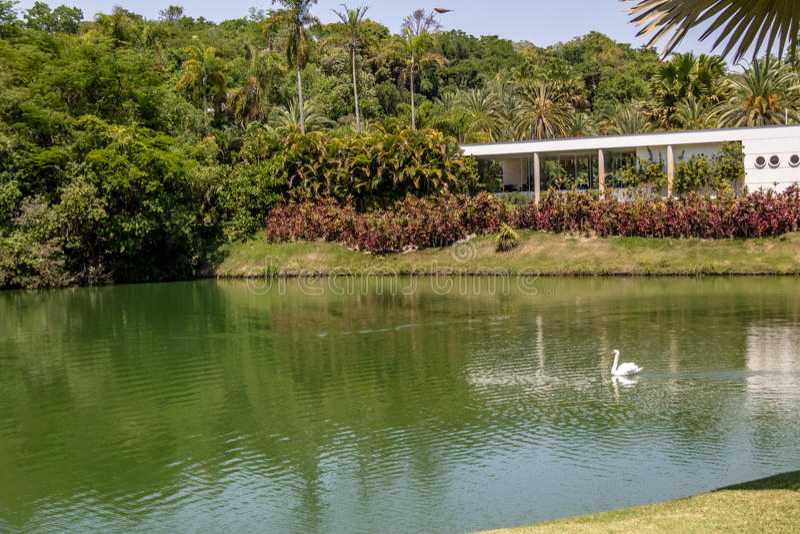 Vista del lago a Inhotim Art Museum contemporaneo pubblico - Brumadinho, Minas Gerais, Brasile fotografie stock