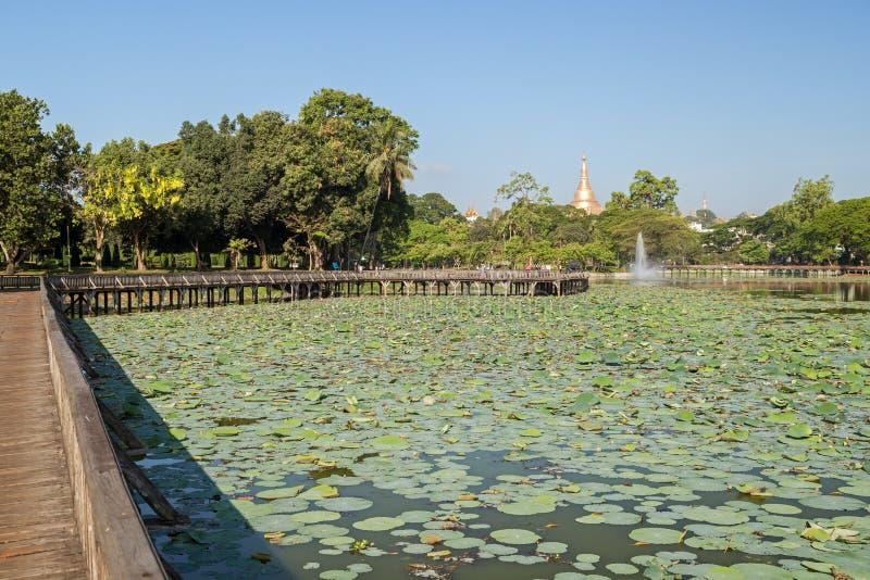Vista del lago Kandawgyi en Rangún foto de archivo libre de regalías
