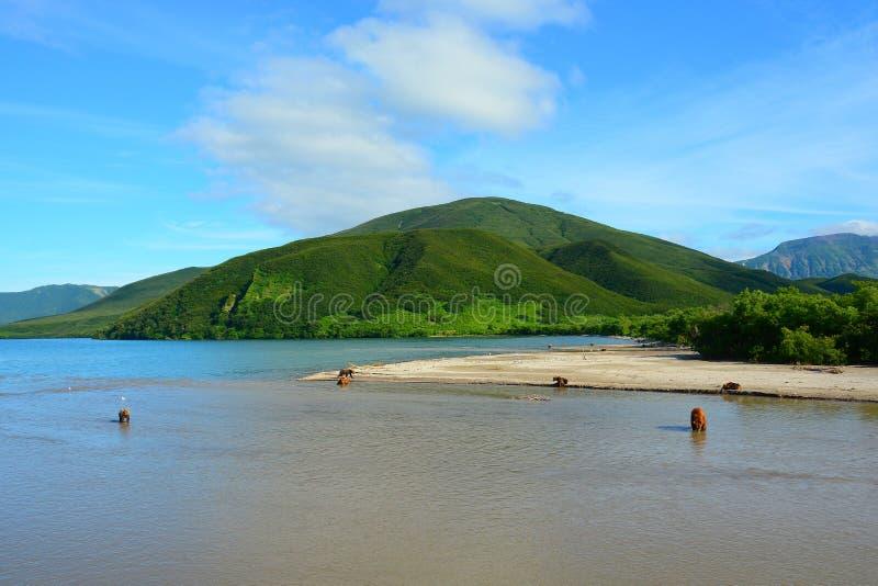 Vista del lago Kuril imagen de archivo libre de regalías