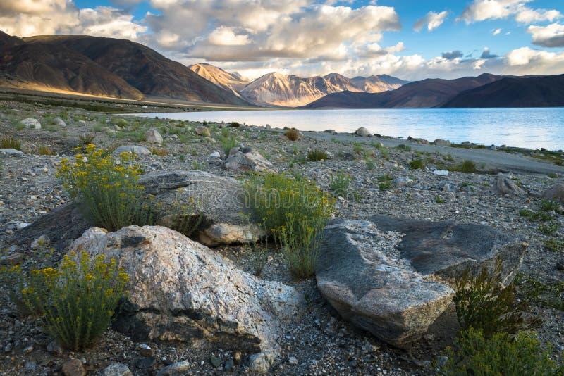 Vista del lago Pangong fotografía de archivo libre de regalías
