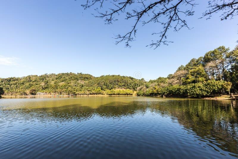 Vista del lago park di Malwee Jaragua fa Sul Santa Catarina fotografia stock