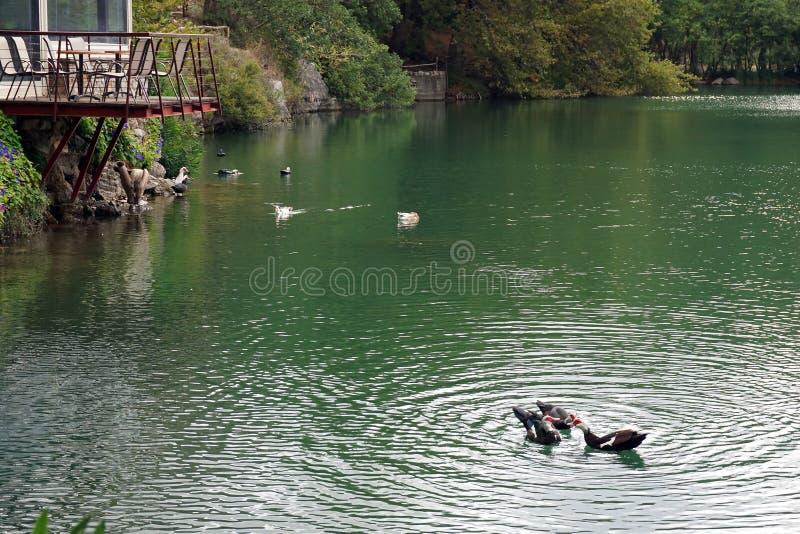 Vista del lago Votomenos, un lago artificial hermoso en Creta foto de archivo