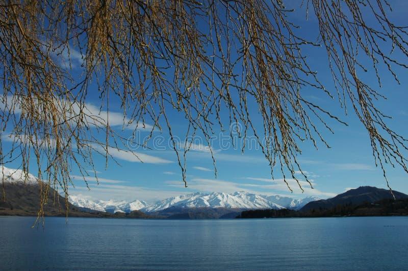 Vista del lago winter fotografia stock