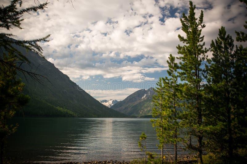 Vista del lago y de las montañas hermosos a través de la picea verde foto de archivo libre de regalías