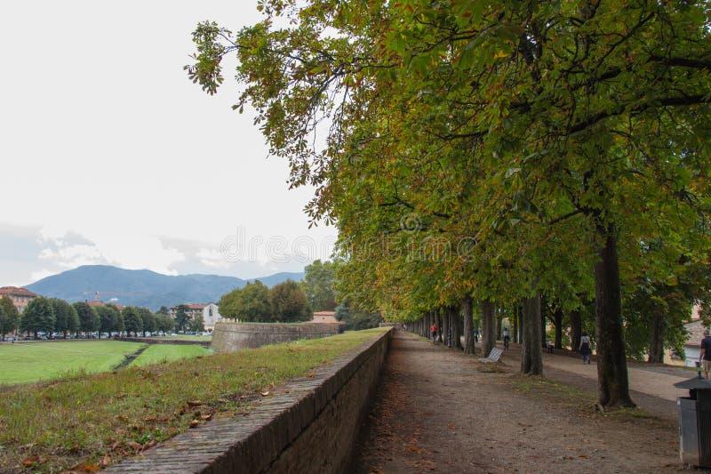 Vista del lanscape de la pared alrededor de la ciudad vieja de Lucca Toscana Italia foto de archivo libre de regalías