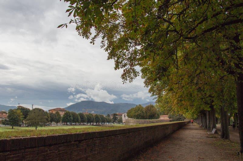 Vista del lanscape de la pared alrededor de la ciudad vieja de Lucca Toscana Italia imagen de archivo