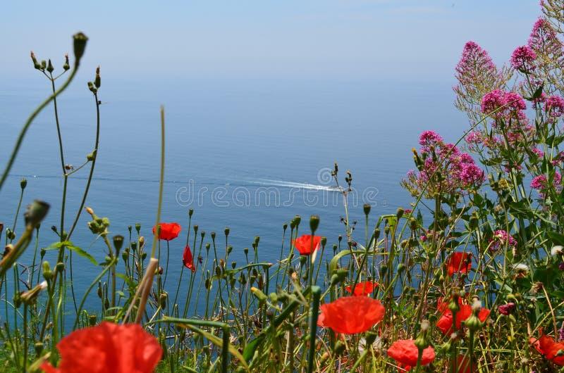 Vista del mar Ligure fotografia stock libera da diritti