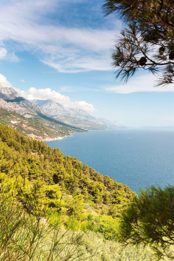 Vista del mare adriatico e della baia con l'abetaia sulle montagne fotografia stock libera da diritti