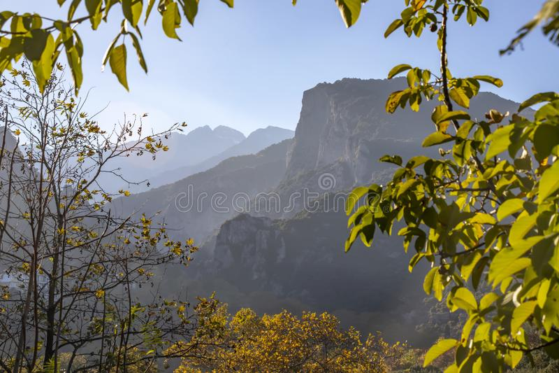 Vista del monte Olimpo en la niebla en un marco de las hojas del árbol fotografía de archivo libre de regalías