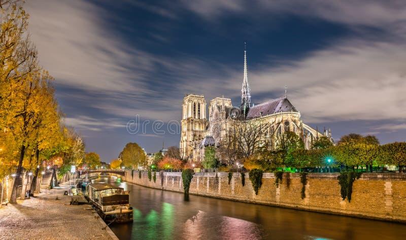 Vista del Notre-Dame de Paris dalle banche della Senna alla notte fotografie stock