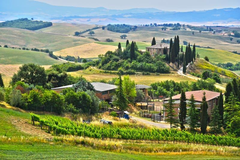 Vista del paesaggio del d& x27 di Val; Orcia, Toscana, Italia fotografia stock