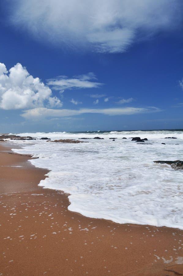 Vista del paesaggio della spiaggia di Pedrera della La in Rocha, Uruguay immagini stock libere da diritti