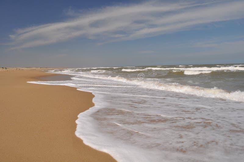 Vista del paesaggio della spiaggia di Pedrera della La in Rocha, Uruguay immagine stock libera da diritti