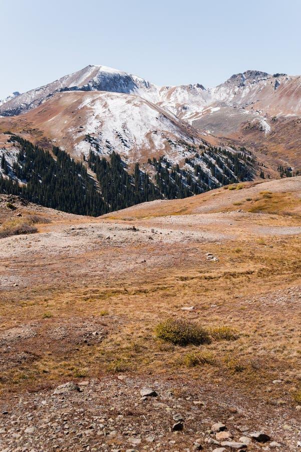 Vista del paesaggio delle montagne ricoperte neve al passaggio di indipendenza vicino ad Aspen, Colorado fotografia stock