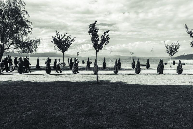 Vista del paesaggio del dettaglio del lago ohrid immagini stock