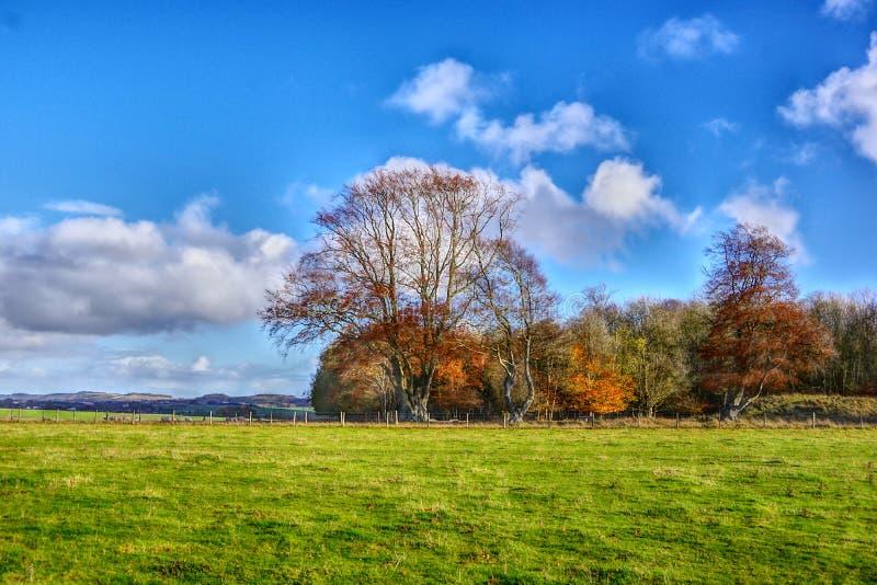Vista del paesaggio di area del monumento intorno a Stonehenge fotografie stock