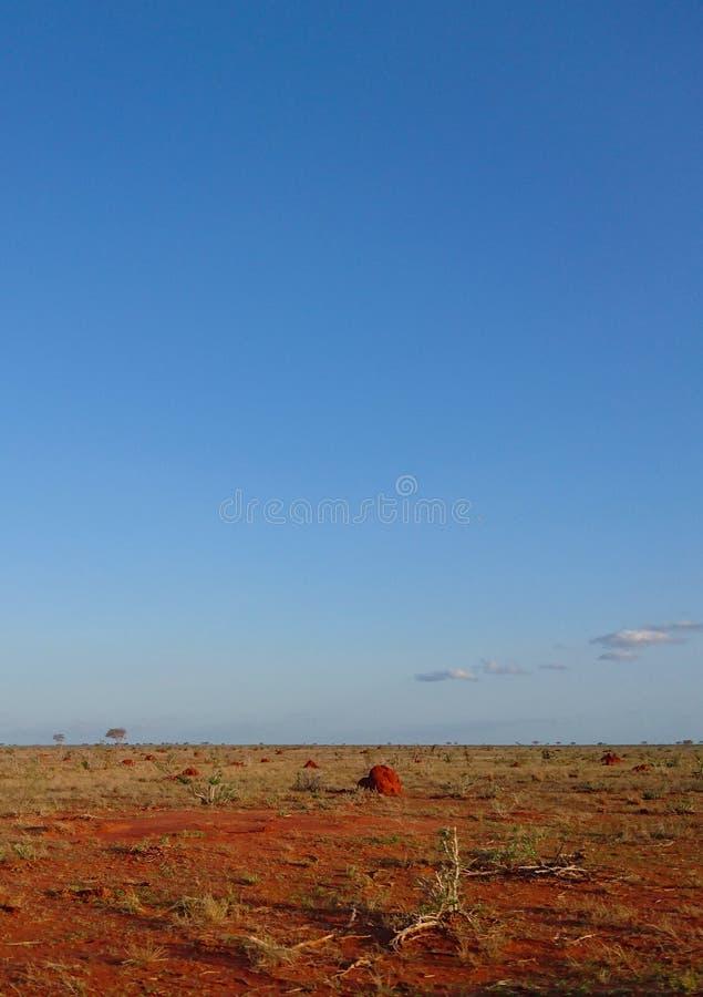 Vista del paesaggio di un campo secco del pascolo immagine stock libera da diritti