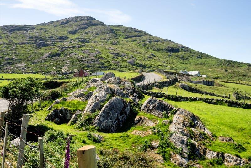 Vista del paesaggio in Kerry ad ovest, penisola di Beara in Irlanda immagine stock
