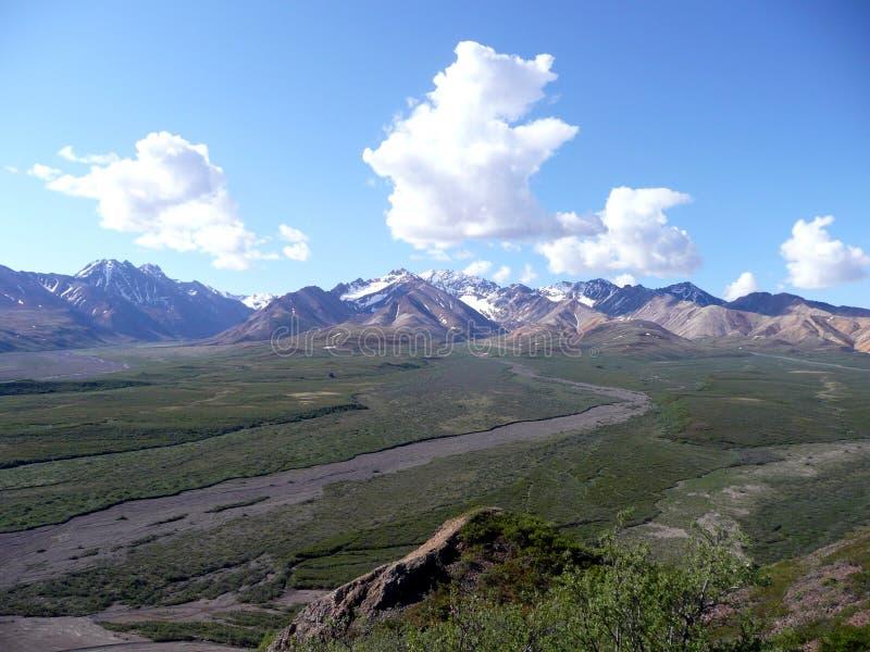 Vista del paesaggio del parco nazionale di Denali immagine stock libera da diritti