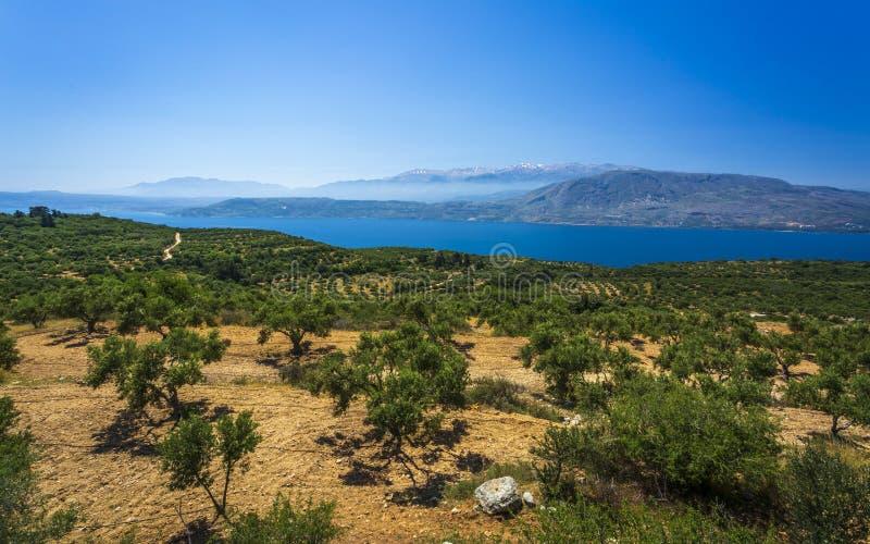 Vista del paisaje con olivos, montañas y mar de Creta, Islas Griegas, Grecia, Europa foto de archivo