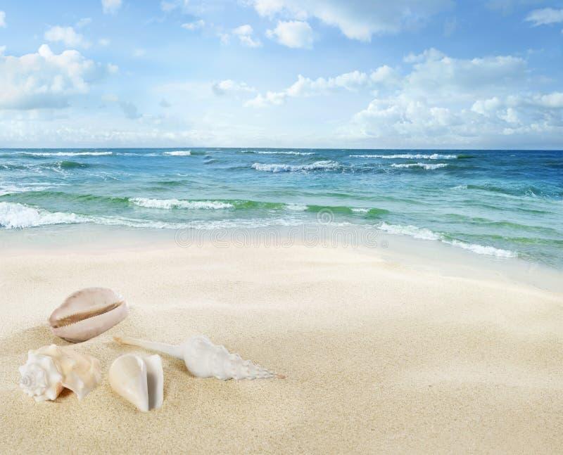 Vista del paisaje marino fotos de archivo libres de regalías