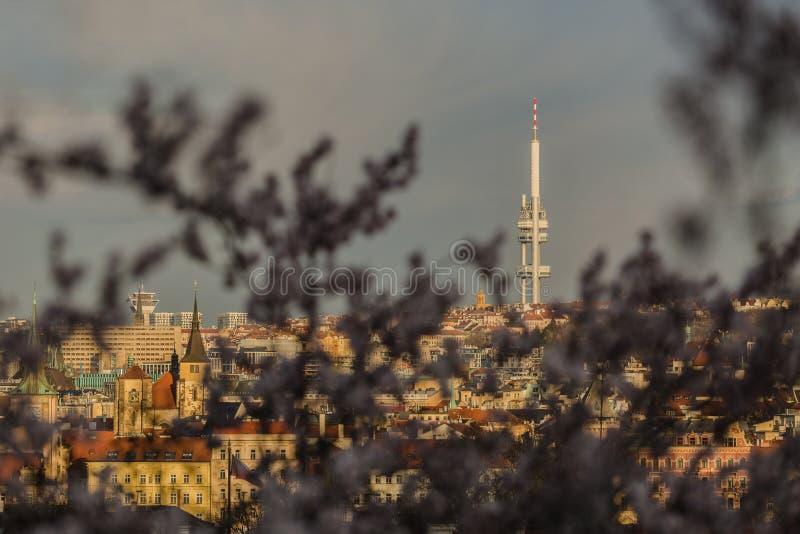 Vista del paisaje urbano de la primavera Praga, República Checa fotos de archivo