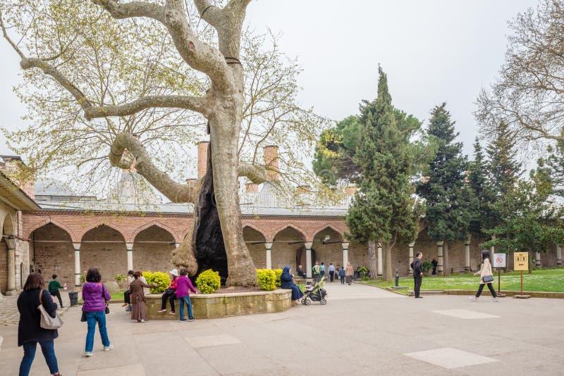 Vista del palazzo di Topkapi a Costantinopoli, Turchia immagine stock libera da diritti