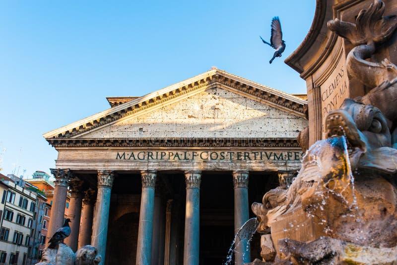 Vista del panteon a Roma con i piccioni che volano nella parte anteriore immagine stock libera da diritti