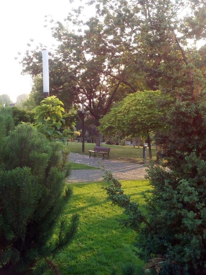 Vista del parco immagini stock libere da diritti