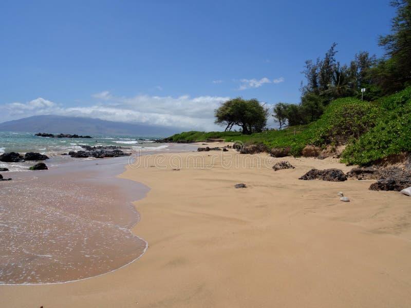 Vista del parco I della spiaggia di Kamaole in Maui, Hawai fotografie stock libere da diritti