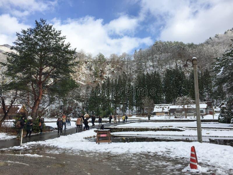 Vista del parque en el invierno foto de archivo