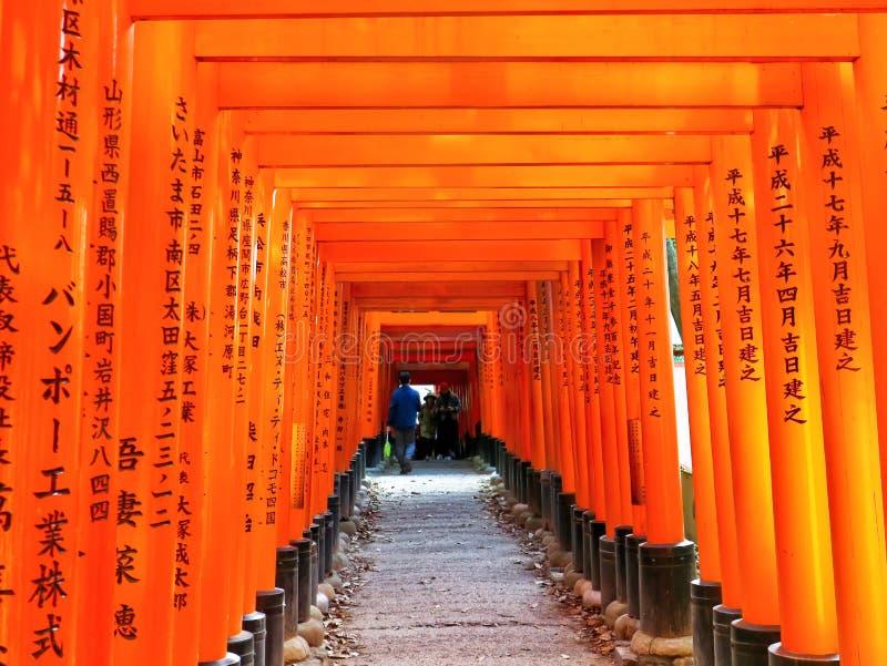 Vista del percorso giapponese di torii a Kyoto, Giappone fotografia stock