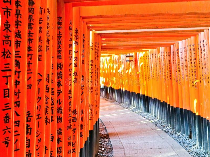 Vista del percorso giapponese di torii a Kyoto, Giappone immagini stock libere da diritti