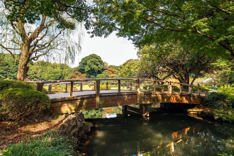 Vista del ponte nel parco di Shinjuku, Tokyo, Giappone Copi lo spazio per testo immagine stock