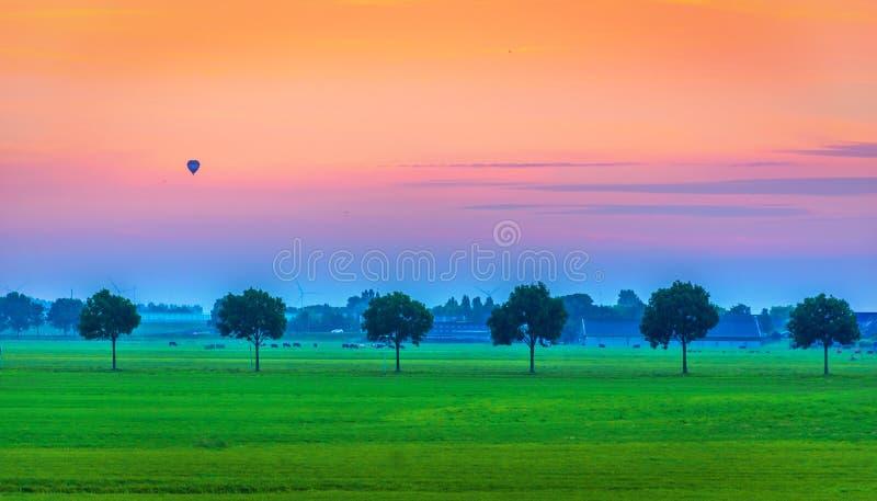 Vista del prado con los árboles en la línea, cielo anaranjado con el aerostato, Holanda imagen de archivo libre de regalías
