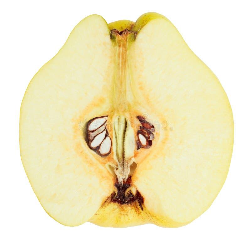 Vista del primo piano di sezione trasversale della frutta della cotogna immagine stock
