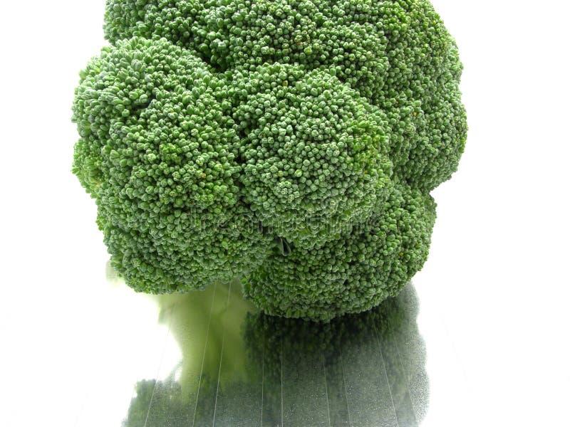 Vista del primo piano su broccolo immagini stock libere da diritti
