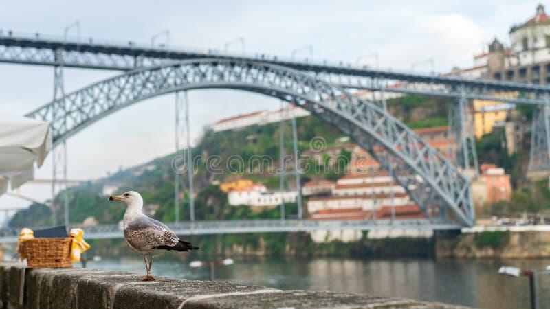 Vista del puente famoso de Dom Luiz en Oporto, Portugal en un día nublado fotografía de archivo