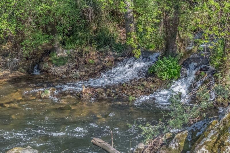 Vista del río de DÃo, con los árboles, rocas y vegetación en los bancos, reflexiones en el agua y colores brillantes fotos de archivo