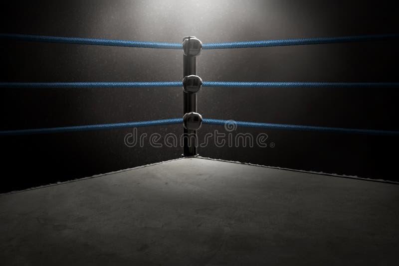 Vista del ring professionale fotografia stock libera da diritti
