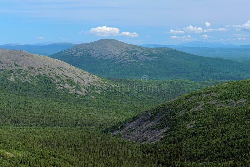 Vista del supporto di Burtym in Ural nordico, Russia fotografia stock libera da diritti