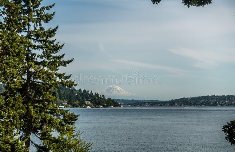 Vista del supporto Rainier From Seward Park 5 fotografia stock libera da diritti